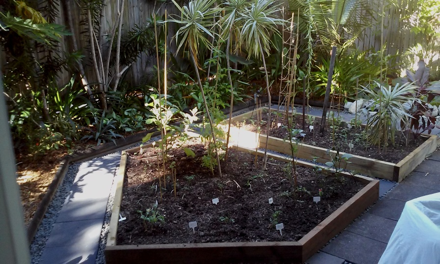 Timber garden beds and paving