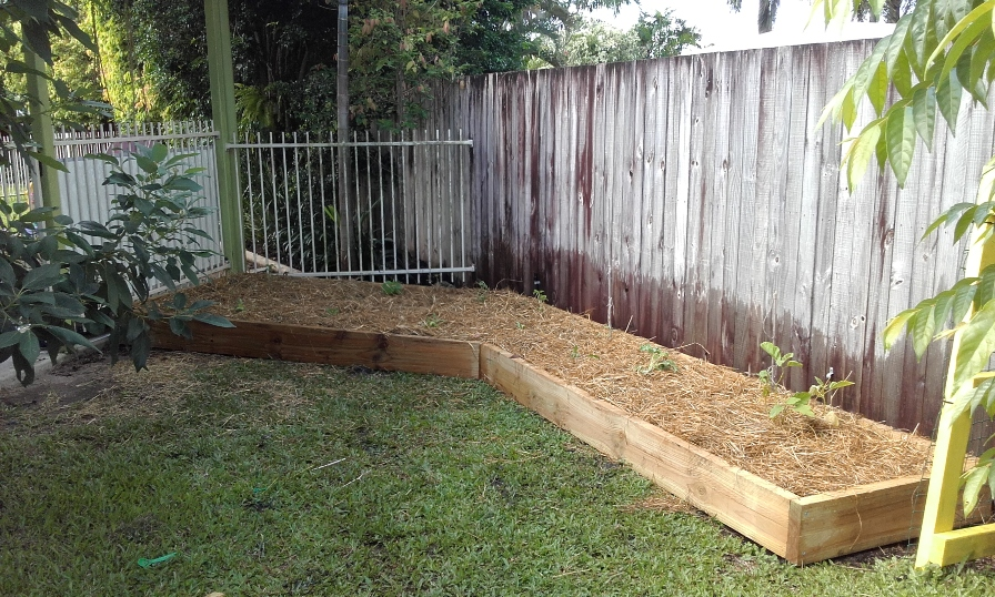 Vegetable garden bed after